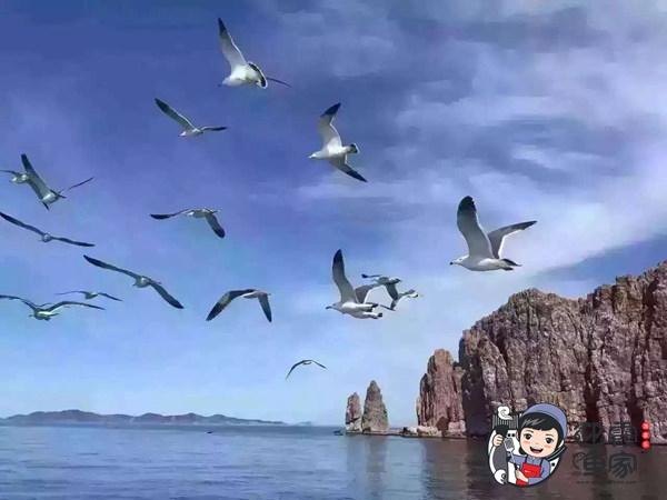 蓬莱到长岛坐船要多久?