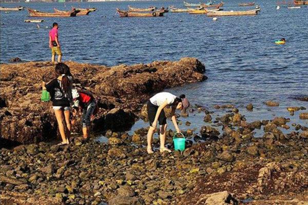 中国最适合赶海的休闲度假岛屿